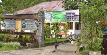 Desa Pengotan - Panduan Liburan di Bali