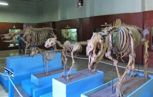 Arkeologi Indonesia - YOEXPLORE.co.id