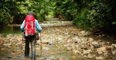 Panduan Traveling, YOEXPLORE - tips saat masuk hutan