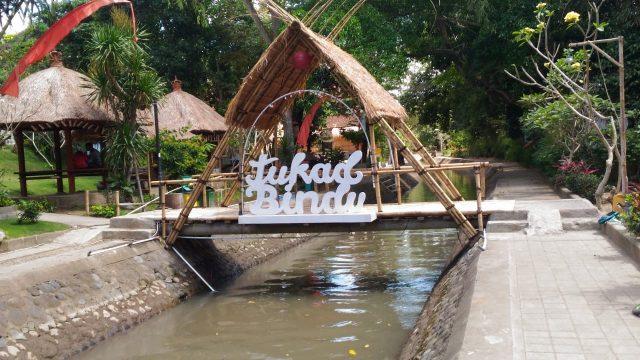 sungai yang ada di Bali - Panduan Traveling, YOEXPLORE - yoexplore.co.id