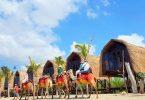 Liburan Keluarga di Bali - yoexplore , travel marketplace - liburan keluarga