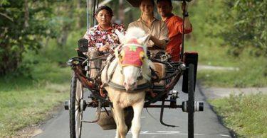 Family Trips Jogjakarta