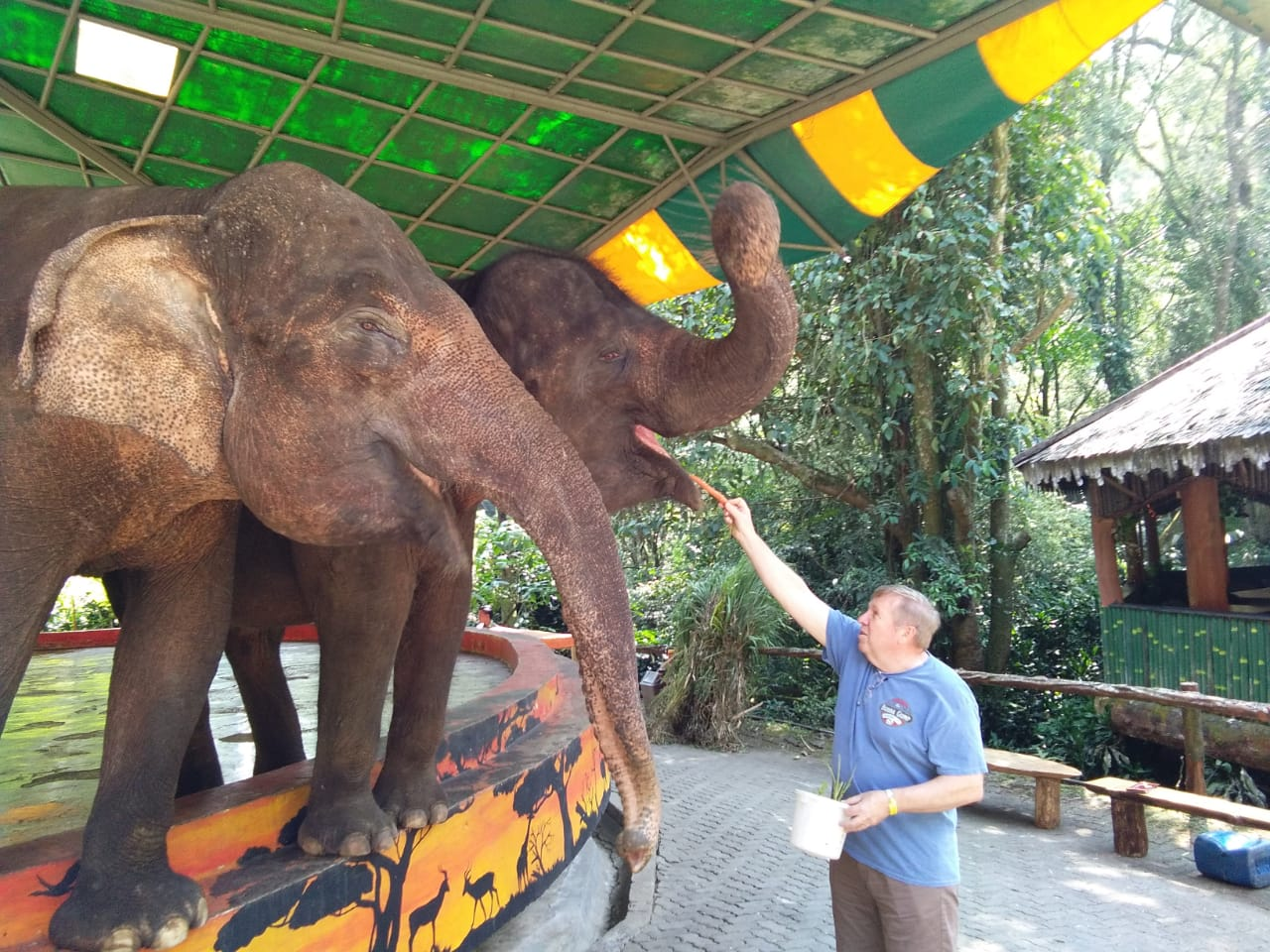wisata keluarga taman safari - yoexplore, liburan keluarga - yoexplore.co.id