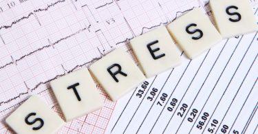 traveling menghilangkan stress - yoexplore, liburan keluarga - yoexplore.co.id