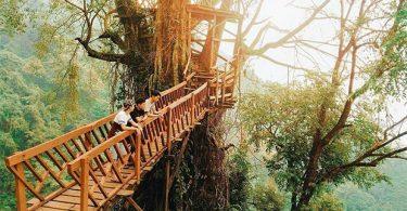 jalan jalan ke bogor - yoexplore, liburan keluarga - yoexplore.co.id