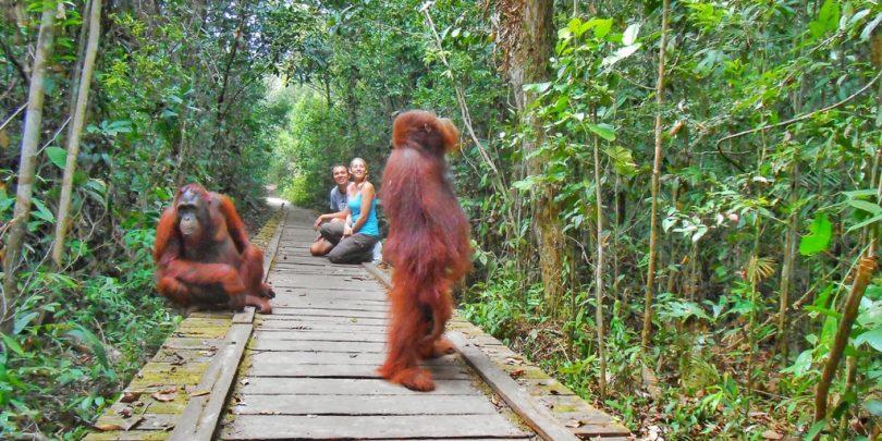 wisata baru di indonesia - yoexplore, liburan keluarga - yoexplore.co.id