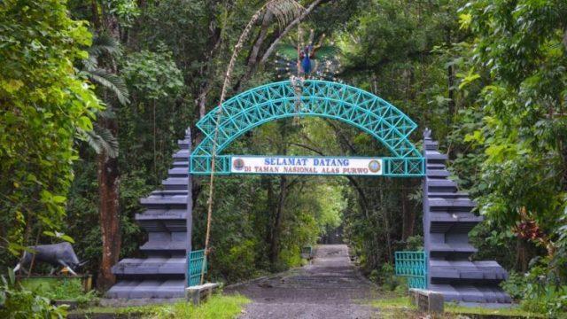 tempat pesugihan di Indonesia - yoexplore, liburan keluarga - yoexplore.co.id