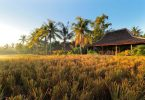 Bhanuswari resort - YoExplore, liburan keluarga - yoexplore.co.id
