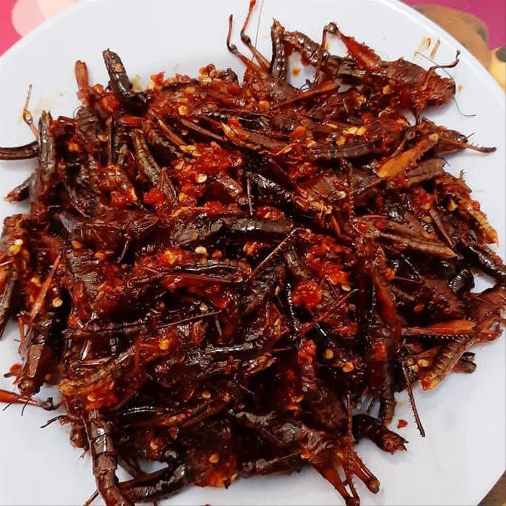 makanan ekstrim di indonesia - yoexplore, liburan keluarga - yoexplore.co.id