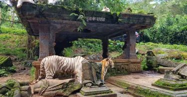 sejarah taman safari bogor indonesia - yoexplore, liburan keluarga - yoexplore.co.id
