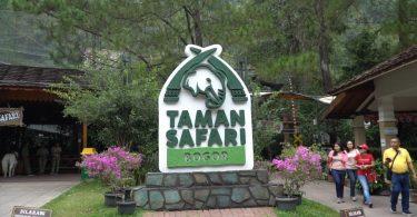 taman safari di Indonesia - yoexplore, liburan keluarga - yoexplore.co.id