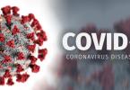 apa itu virus corona - yoexplore, liburan keluarga - yoexplore.co.id