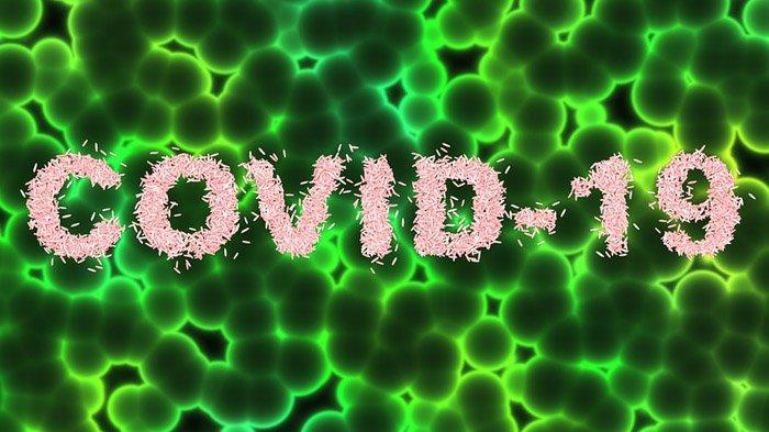 coronavirus di Indonesia - yoexplore, liburan keluarga - yoexplore.co.id