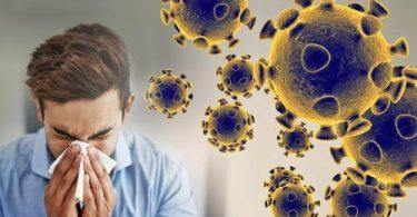hoaks virus korona - yoexplore, liburan keluarga - yoexplore.co.id