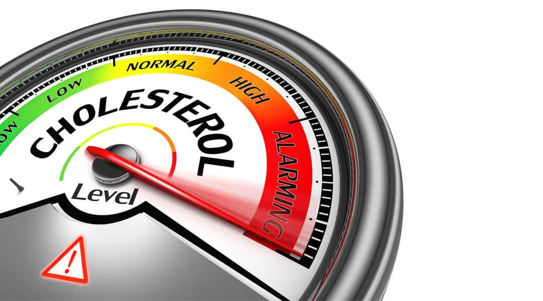 turunkan berat badan demi kolestrol
